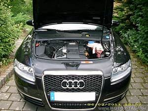 Audi A6 4f Kennzeichenhalter Vorne : dsci1239 orig domstrebe vorne nachr sten f r 30 ~ Kayakingforconservation.com Haus und Dekorationen