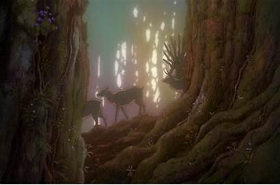 Forest Mononoke Princess Ghibli Studio Anime Mystical