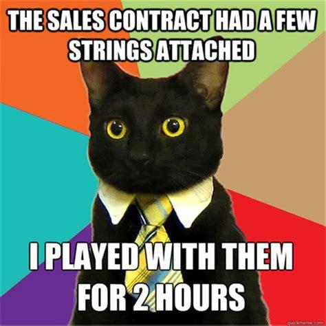 Buisness Cat Meme - random funny memes 24 pics