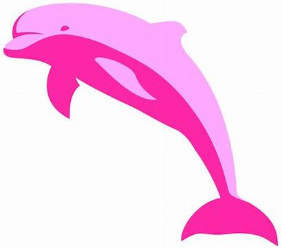 Delfin Dolphin Clipart Pink Clip Dolphins Cliparts