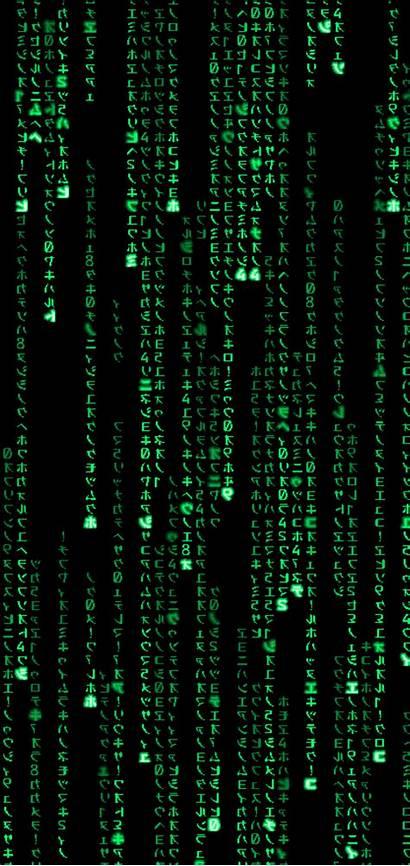 Matrix Phone Wallpapers Wallpaperaccess