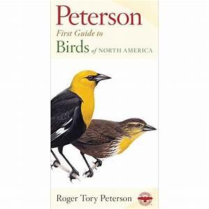 Birds First Guide