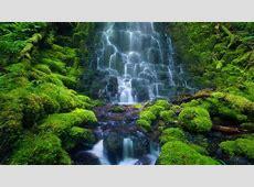 sensoriarainforestcostaricajpg Costa Rica Scuba