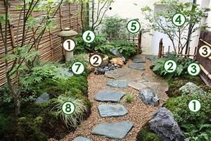 Plante Pour Jardin Japonais : plante japonaise pour jardin l 39 univers du jardin ~ Dode.kayakingforconservation.com Idées de Décoration