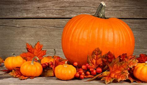 Autumn Pumpkin Wallpaper by The Flavor Of Fall Pumpkin Jon Taffer
