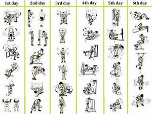 Best 6 Day Workout Routines for Men - No 1 Bodybuilding ...