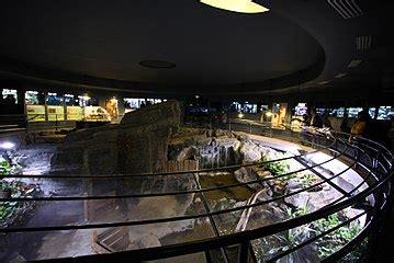 palais de la porte doree wikipedia