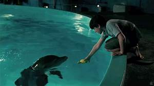 Dolphin Tale  Hd Music Video  -  U0026quot Safe U0026quot  By Westlife