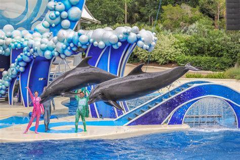 Must Activities Seaworld San Diego Welk Resorts