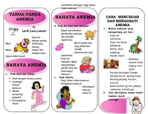 Buah Untuk Wanita Hamil Leaflet Anemia Akper Pemda Raha 2