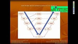 3 Manual Testing Life Cycle Models