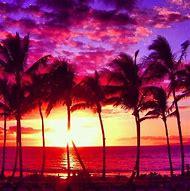 Tropical Beach Sunset Pink