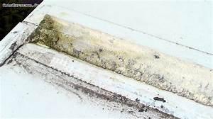 retirer joint silicone salle de bain 9 pour lexemple de With retirer joint silicone salle de bain