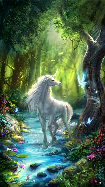 Fairy Unicorn Fairies Forest Unicorns Wallpapers Fantasy