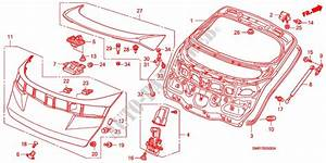 Tailgate Body Parts 20 Type R 2008 Civic Honda Cars
