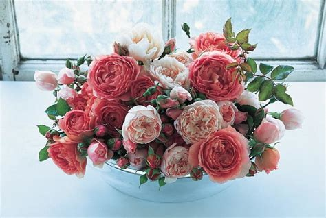 Best English Roses For Cutting From The Garden