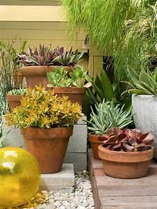 Succulentes Pas Cher : am nagement ext rieur et d coration de jardin pas chers ~ Melissatoandfro.com Idées de Décoration