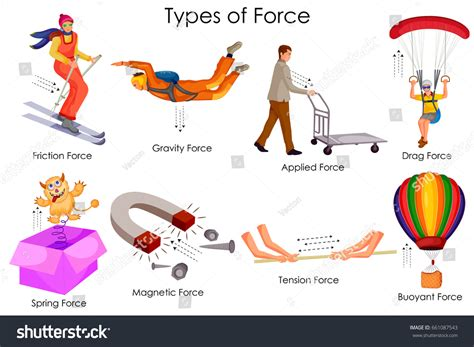 Education Chart Physics Different Types Force Stock Vector
