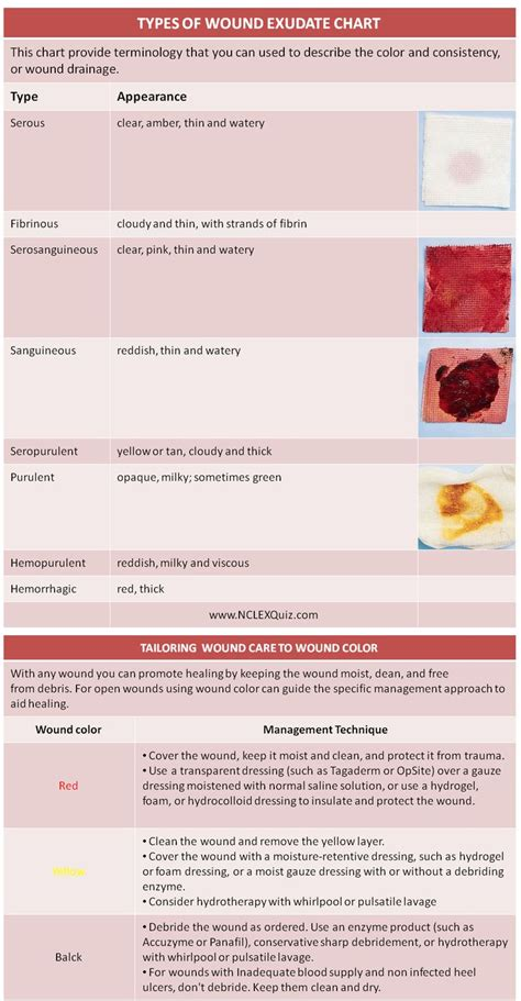 sanguineous drainage color types of wound exudate sheet sheets charts