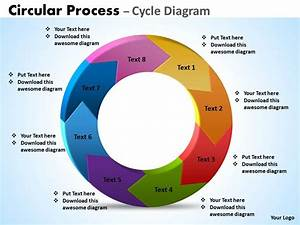 4 Part Cycle Diagram Template