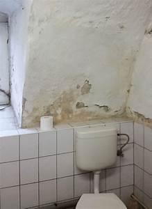 Feuchtigkeit In Der Wand : anwenderberichte anemox ~ Sanjose-hotels-ca.com Haus und Dekorationen
