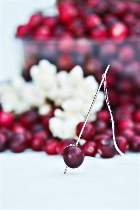 holiday decorating  cranberries