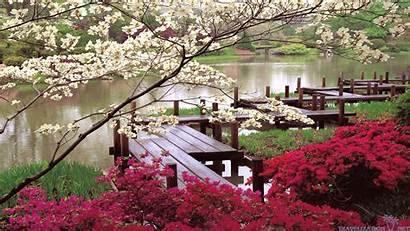 Garden Japanese Spring Wallpapers Japan Nature 1080p