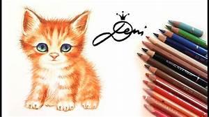 Wie Fange Ich Eine Katze : katze zeichnung echtzeit wie zeichnet man eine katze cat drawing realtime e ~ Markanthonyermac.com Haus und Dekorationen