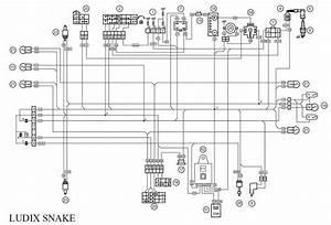 Wiring Diagram Peugeot Elyseo