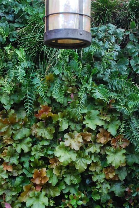 To Make A Vertical Garden Wall by How To Build A Vertical Garden Aka Living Wall