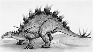 Lexovisaurus Dinosaurs Facts | Dinosaurs Pictures and Facts