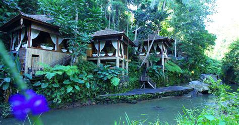 luxury homes interior design 21 rainforest hotels in bali tucked away in lush paradise