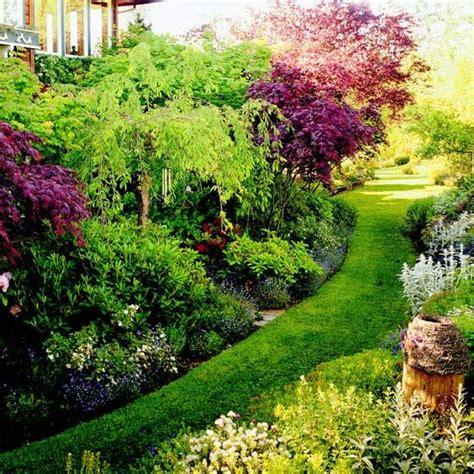 northwest garden ideas 33 best images about flower bed on pinterest gardens front yards and evergreen shrubs