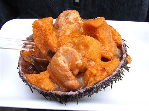 olive green top sea urchin a seafood delicacy pogogi japanese food