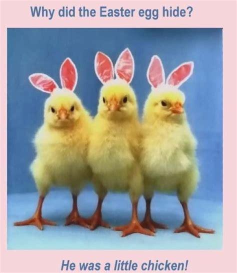 Easter Memes - easter memes