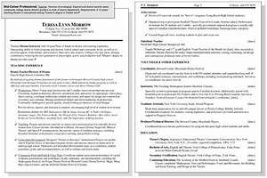sample resume for a mid career professional dummies With sample resume for mid level position
