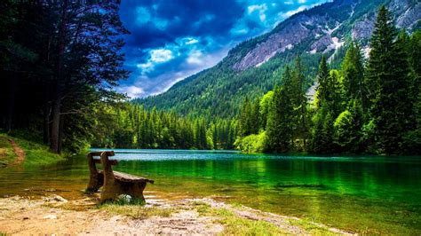 Wonderful Mountain Landscape With Green Pine Forest Green