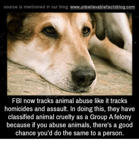 Abuse Memes - 25 best memes about animal cruelty animal cruelty memes