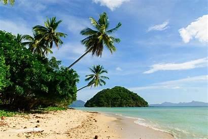 Philippines Palm Beach Landscape Trees Summer Sea