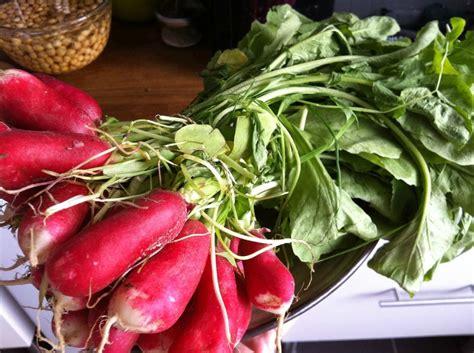 cuisiner des betteraves cuisiner les fanes de radis et de betteraves