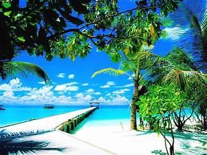 Fond Ecran Mer : image fond ecran mer les fonds d cran ios 11 et macos high ~ Farleysfitness.com Idées de Décoration