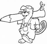 Beaver Coloring Pages sketch template