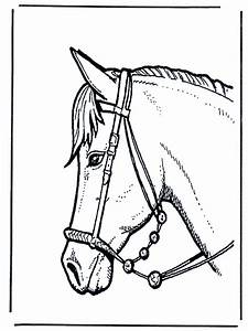 """Animal Stronger """" Horse Head """" coloring to print"""