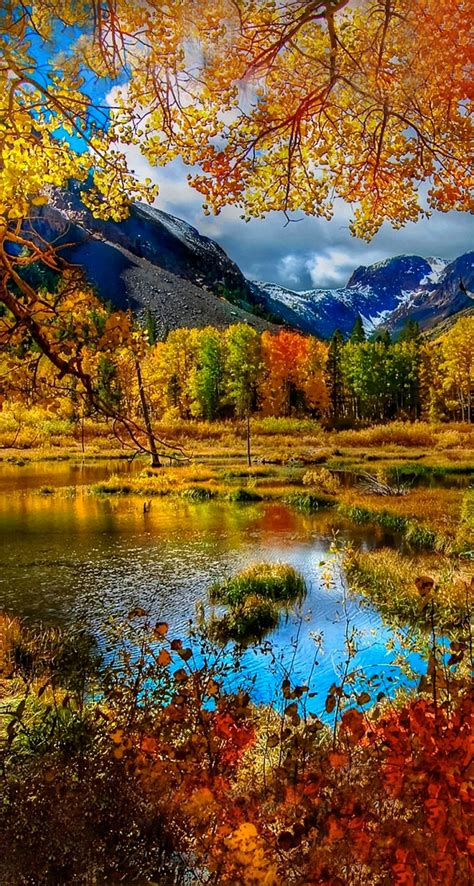 Fall Backgrounds For Phone by Mountain Autumn Iphone Se Free