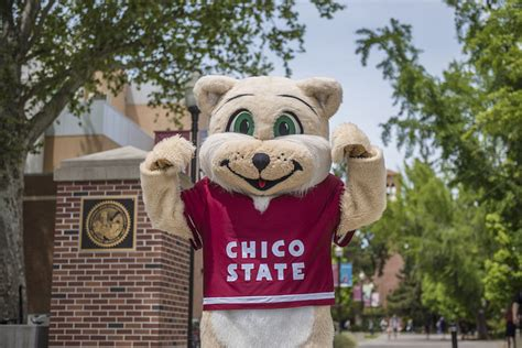 student accounts student financial services csu chico