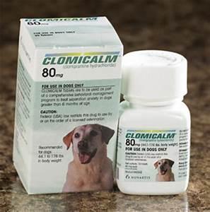 average dose of prozac for dogs qenu