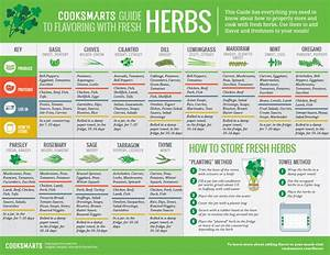 The Ultimate Guide To Flavoring With Fresh Herbs Chef