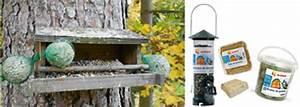 Graines Oiseaux Du Ciel : installer nichoirs et mangeoires pour oiseaux ~ Melissatoandfro.com Idées de Décoration