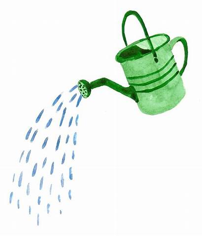 Watering Water Clipart Clip Cans Pouring Plant