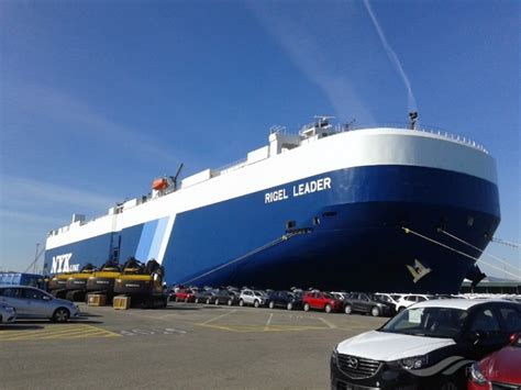 nyk  launches  service  port everglades